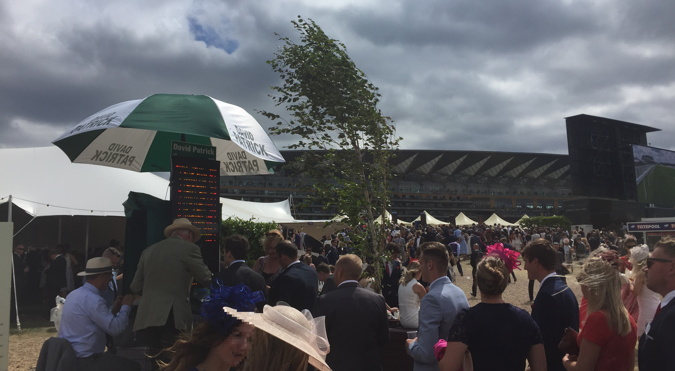 royal ascot bookmaker on the course