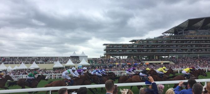 royal ascot runners approaching the winning post