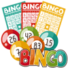How Does Online Bingo Work