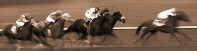 black and white american horse race