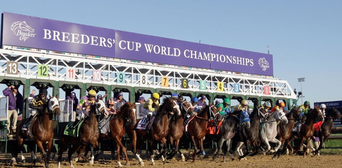 breeders cup race off