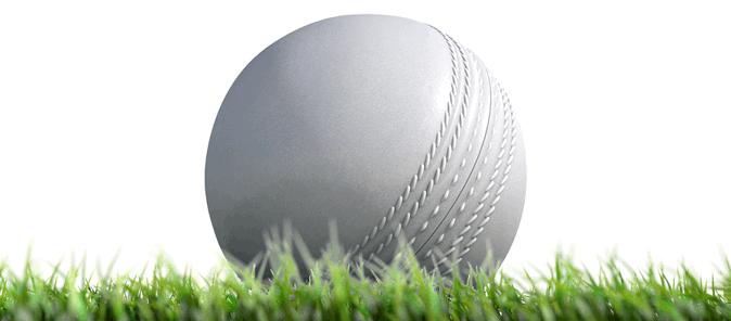 cricket white odi ball sitting on grass