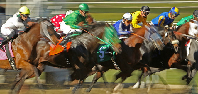 horses galloping for a win in a usa race