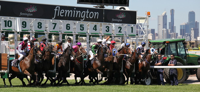 melbourne cup horses leaving the traps