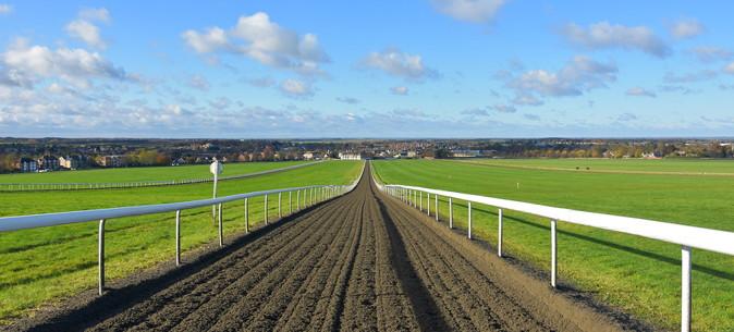 newmarket racecourse gallops