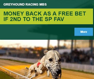 paddy power greyhounds money back 2nd