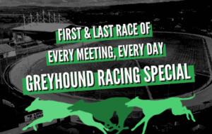 quinnbet greyhound racing money back