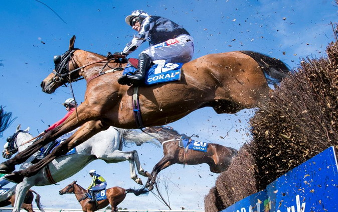 scottish grand national horses running