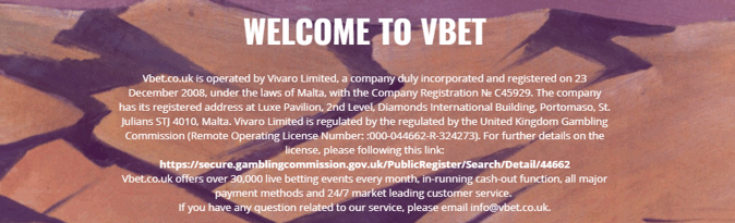 vbet about the company