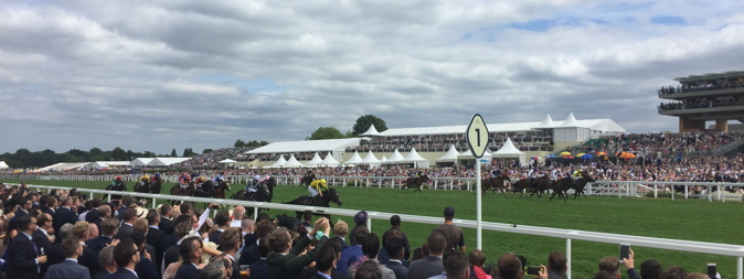 ascot horses running down the final straight