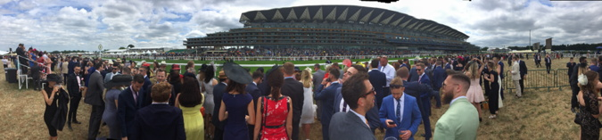 ascot panoramic view of the stands