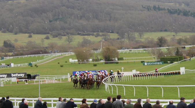 cheltenham racecourse horses running on the bend