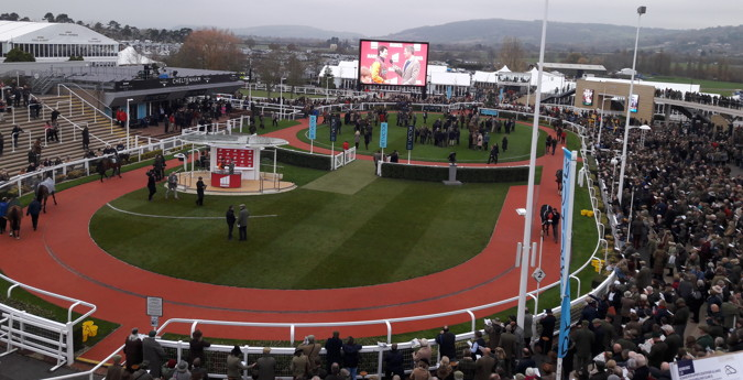 cheltenham racecourse parade ring