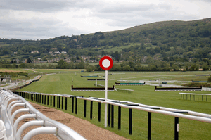 cheltenham winning post