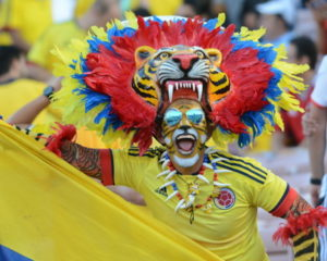 copa america fan in tiger costume