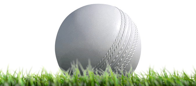 cricket white odi ball sitting on grass