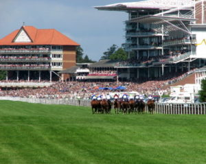 ebor festival at york racecourse