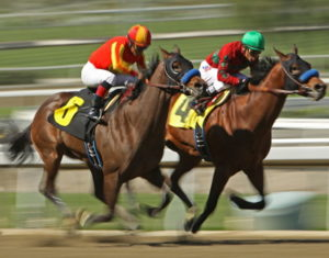 kentucky derby horses running fast