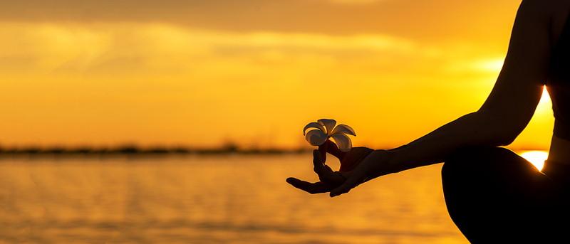 meditating sunset holding flower