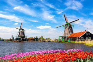 netherlands iconic landscape