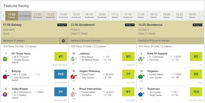 Paddy Power Racing Interface