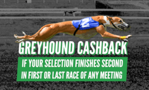 quinnbet greyhound cashback